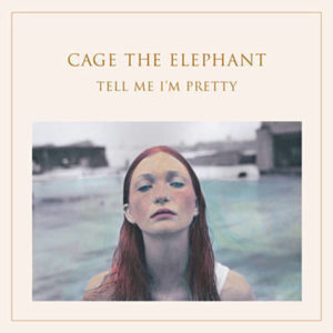 cage the elephant trouble