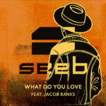 Seeb, Jacob Banks — What Do You Love перевод