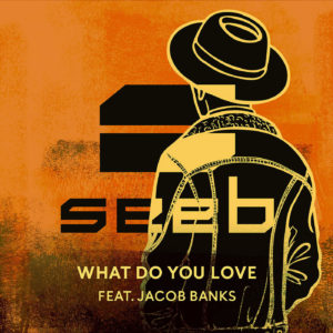 seeb jacob banks what do you love